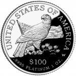 2003 American Eagle Platinum One Ounce Proof Coin Reverse