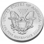 2006 American Eagle Silver One Ounce Uncirculated Coin Reverse