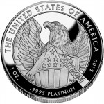 2007 American Eagle Platinum One Ounce Proof Coin Reverse