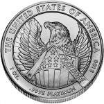 2007 American Eagle Platinum One Ounce Uncirculated Coin Reverse