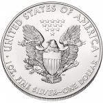 2013 American Eagle Silver One Ounce Bullion Coin Reverse
