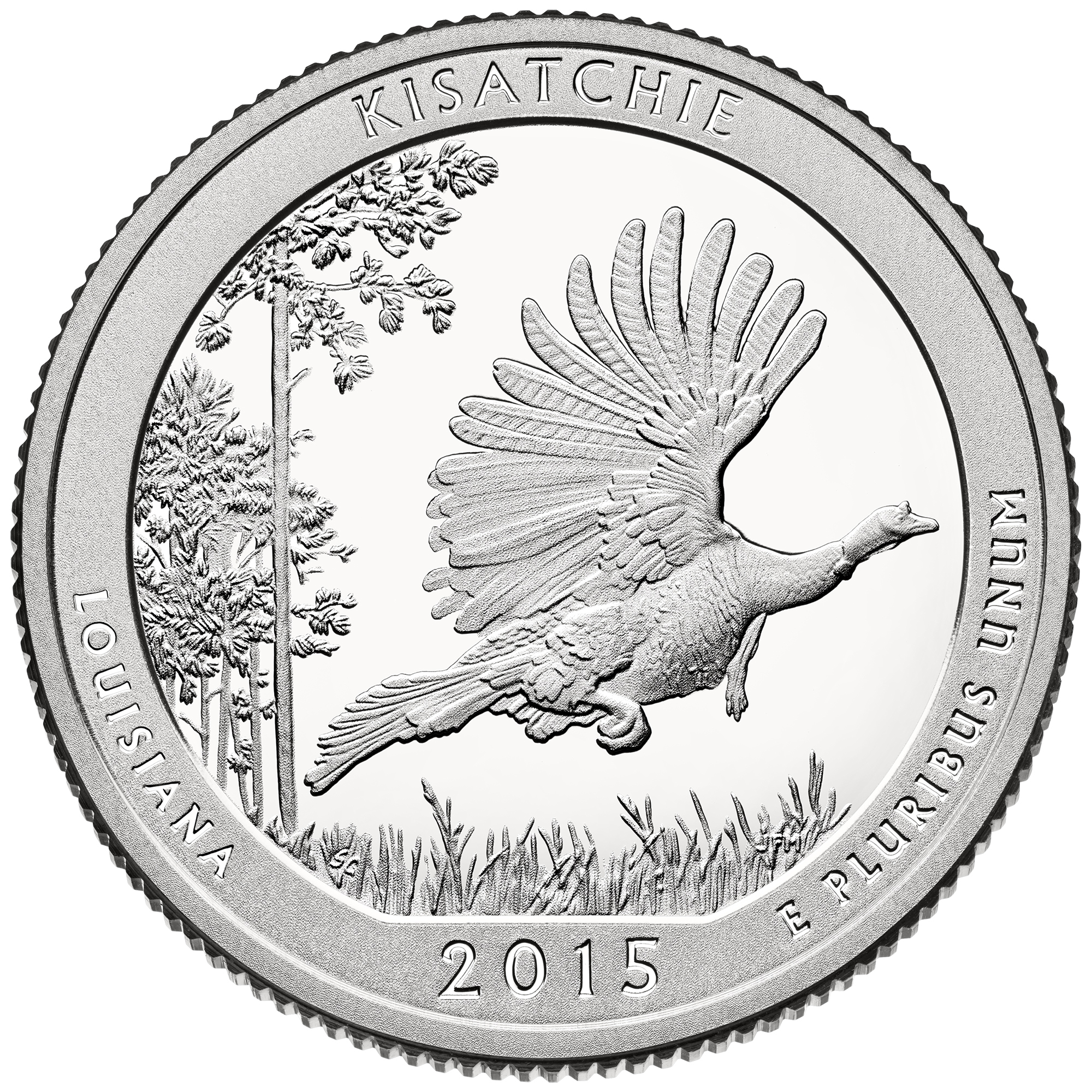 2015 America The Beautiful Quarters Coin Kisatchie Louisiana Proof Reverse
