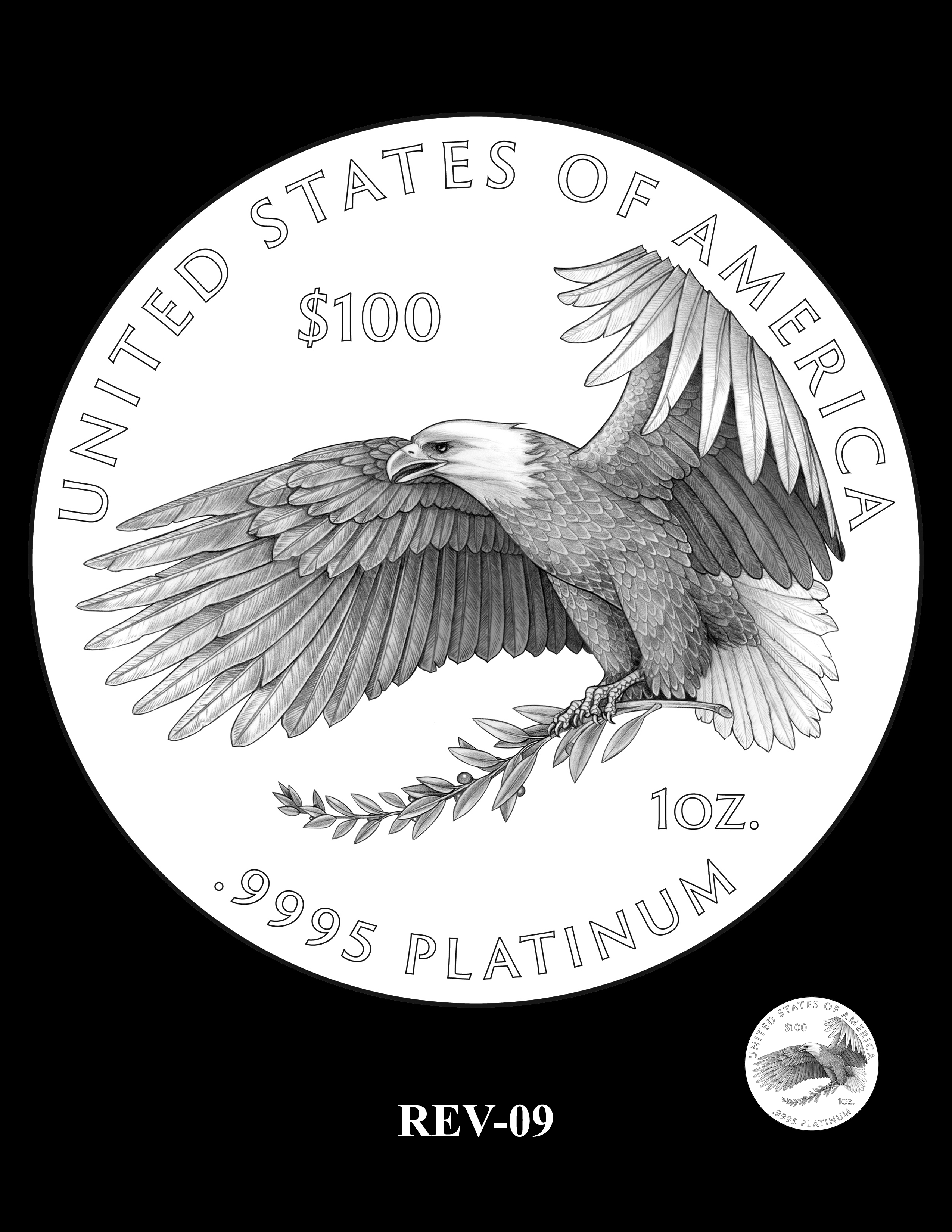 REV-09 - 2018 2019 and 2020 American Eagle Platinum Proof Program