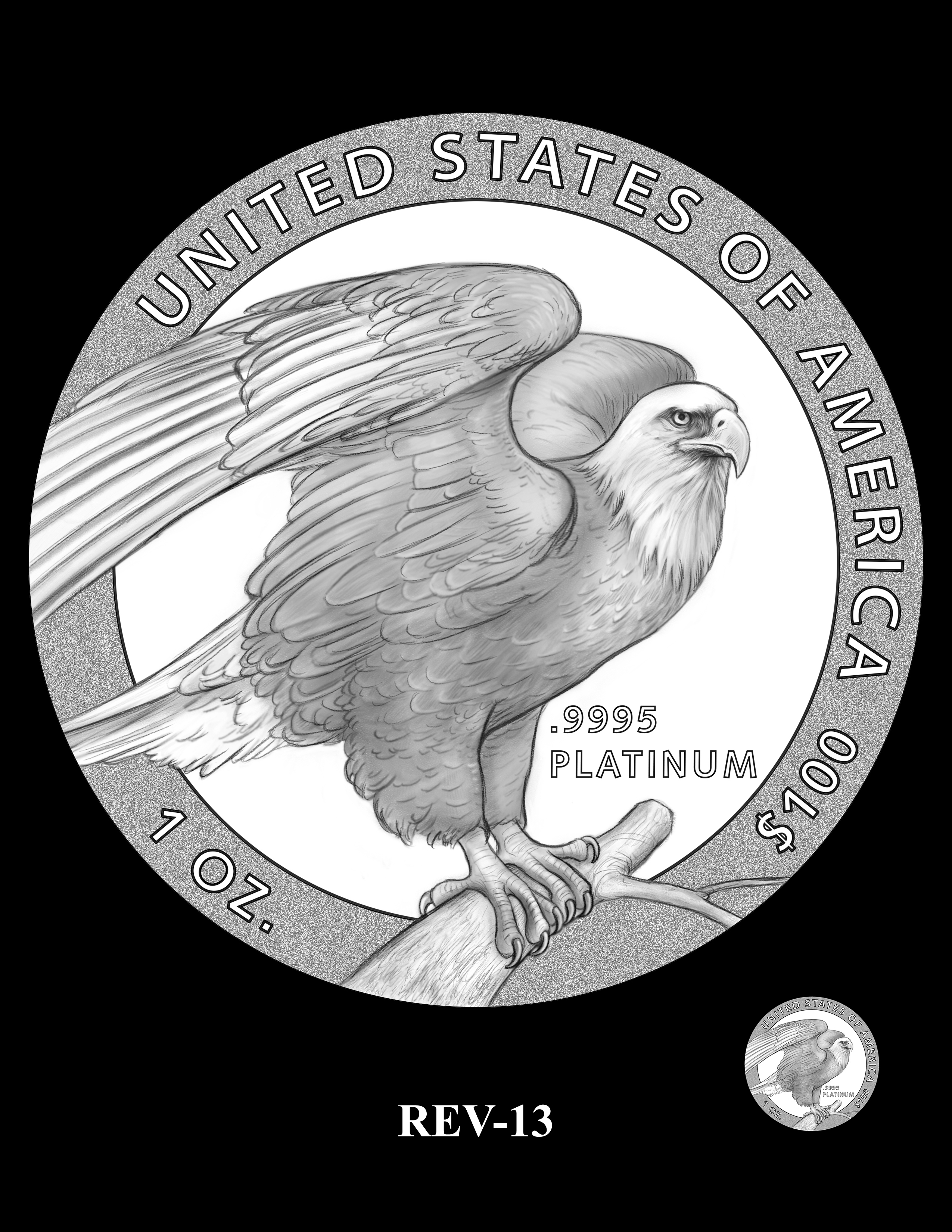 SETXX-REV-13 - 2018 2019 and 2020 American Eagle Platinum Proof Program