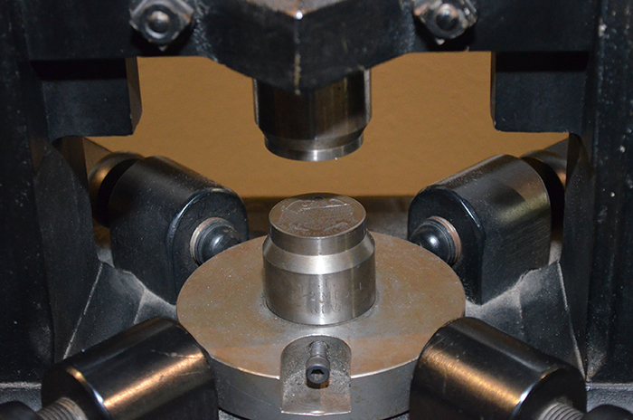 Screw press bottom die