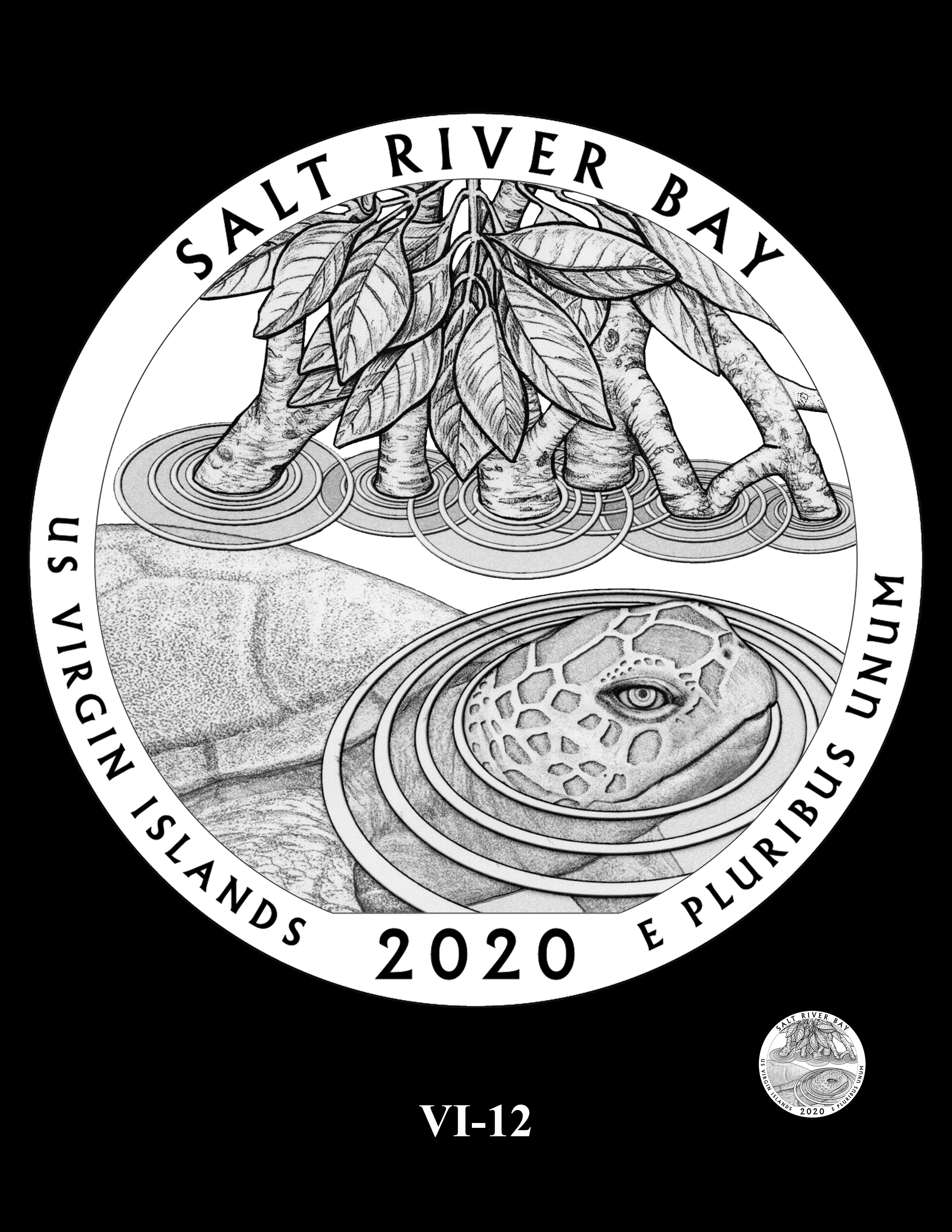 VI-12-- 2020 America the Beautiful Quarters® Program