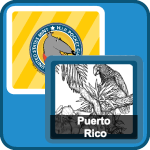 coin match game icon - puerto rico coin design