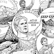 New homepage 2019 CCAC meeting images Steve Gleason Congressional Gold Medal design images feature