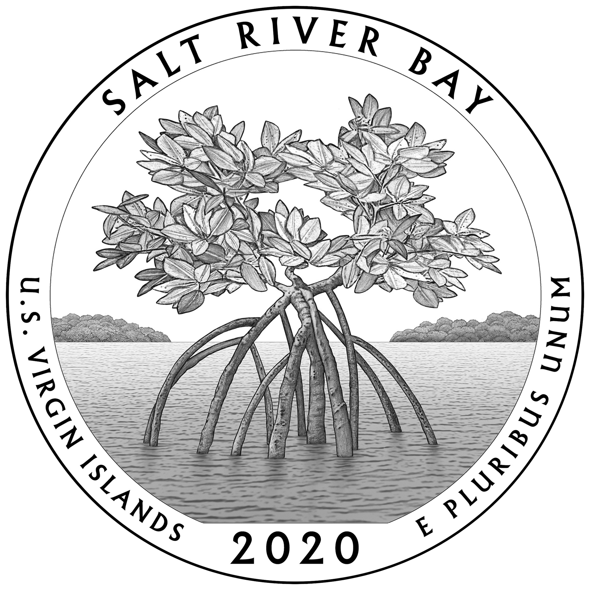 2020 America the Beautiful Quarters Coin Salt River Bay Virgin Islands Line Art Reverse