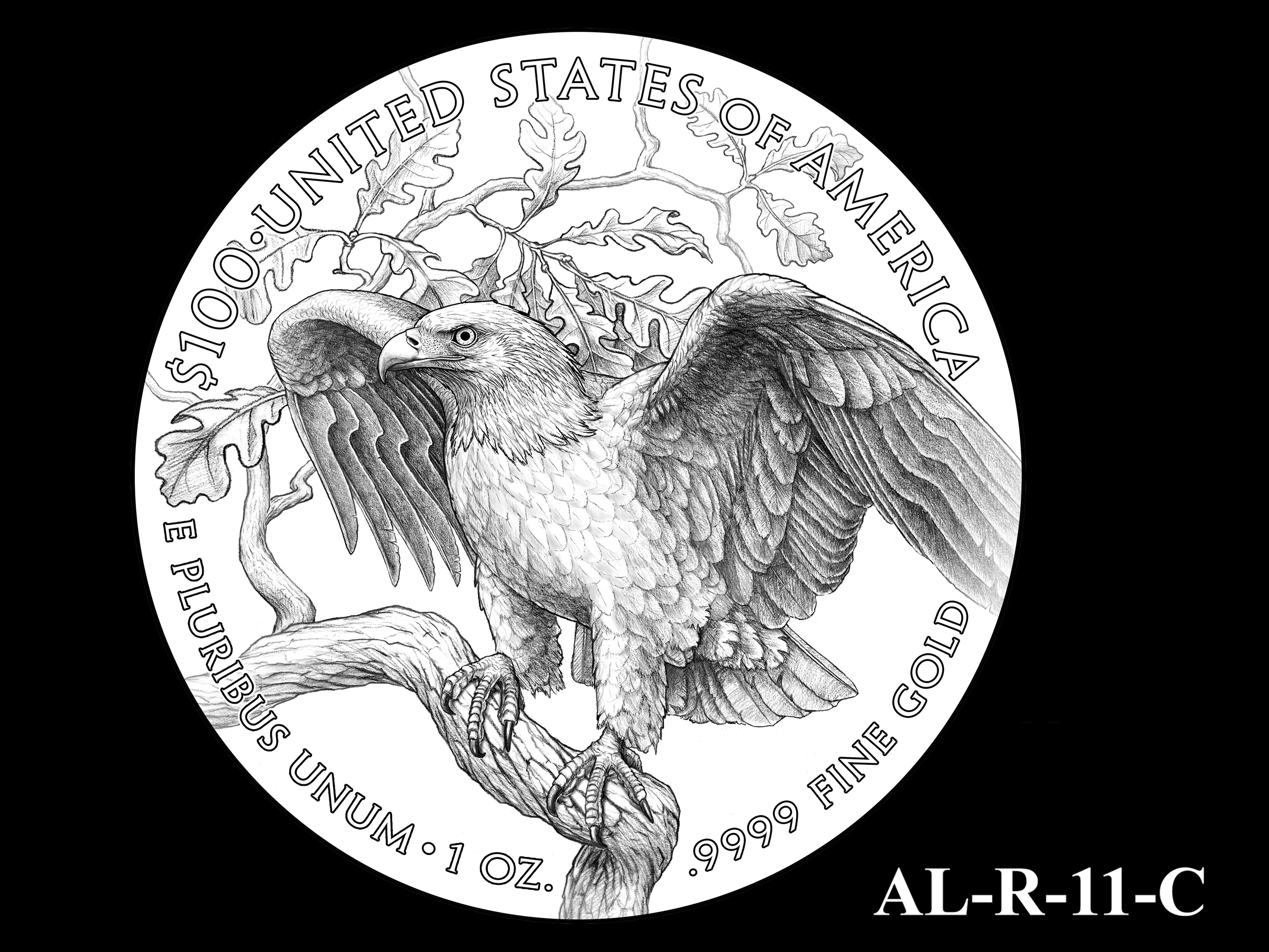AL-R-11-C -- 2021 American Liberty Gold Coin and Silver Medal Program - Reverse