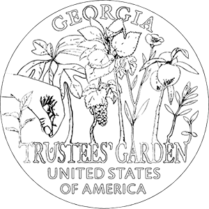 american innovation $1 coin georgia