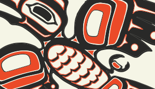 2020 Native American pattern homepage feature
