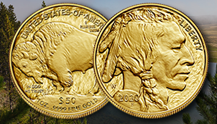 2020 American Buffalo Gold Proof Coin homepage feature