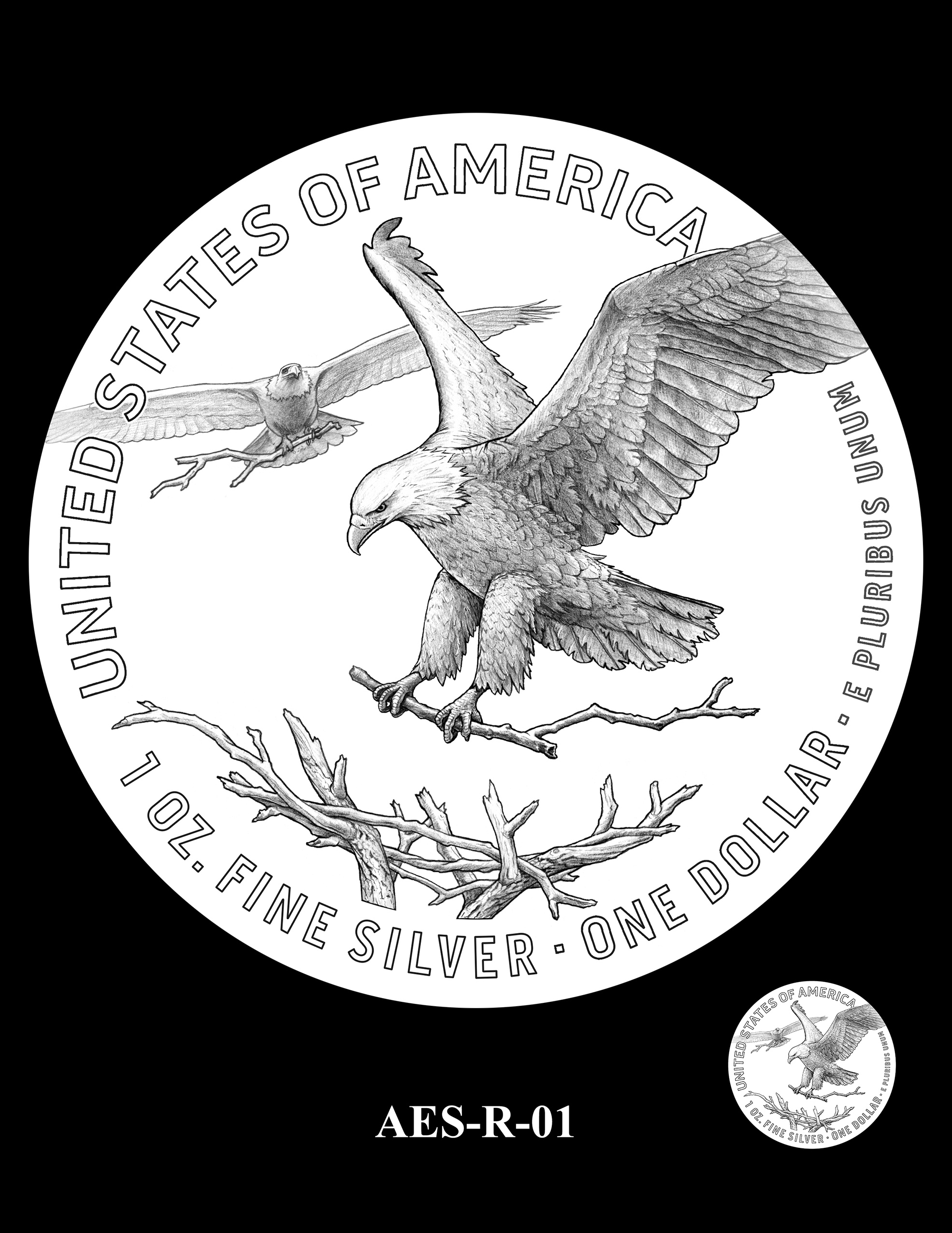 AES-R-01 -- American Eagle Proof and Bullion Silver Coin - Reverse