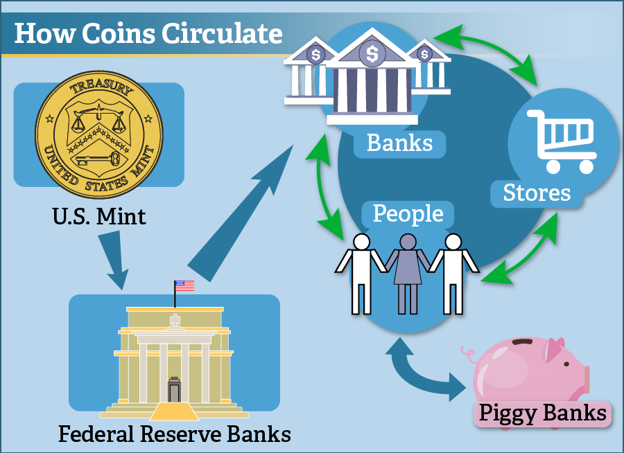How Coins Circulate: the U.S. Mint sends coins to Federal Reserve Banks and then to banks across the U.S. to enter circulation and cycle between banks, people, and stores