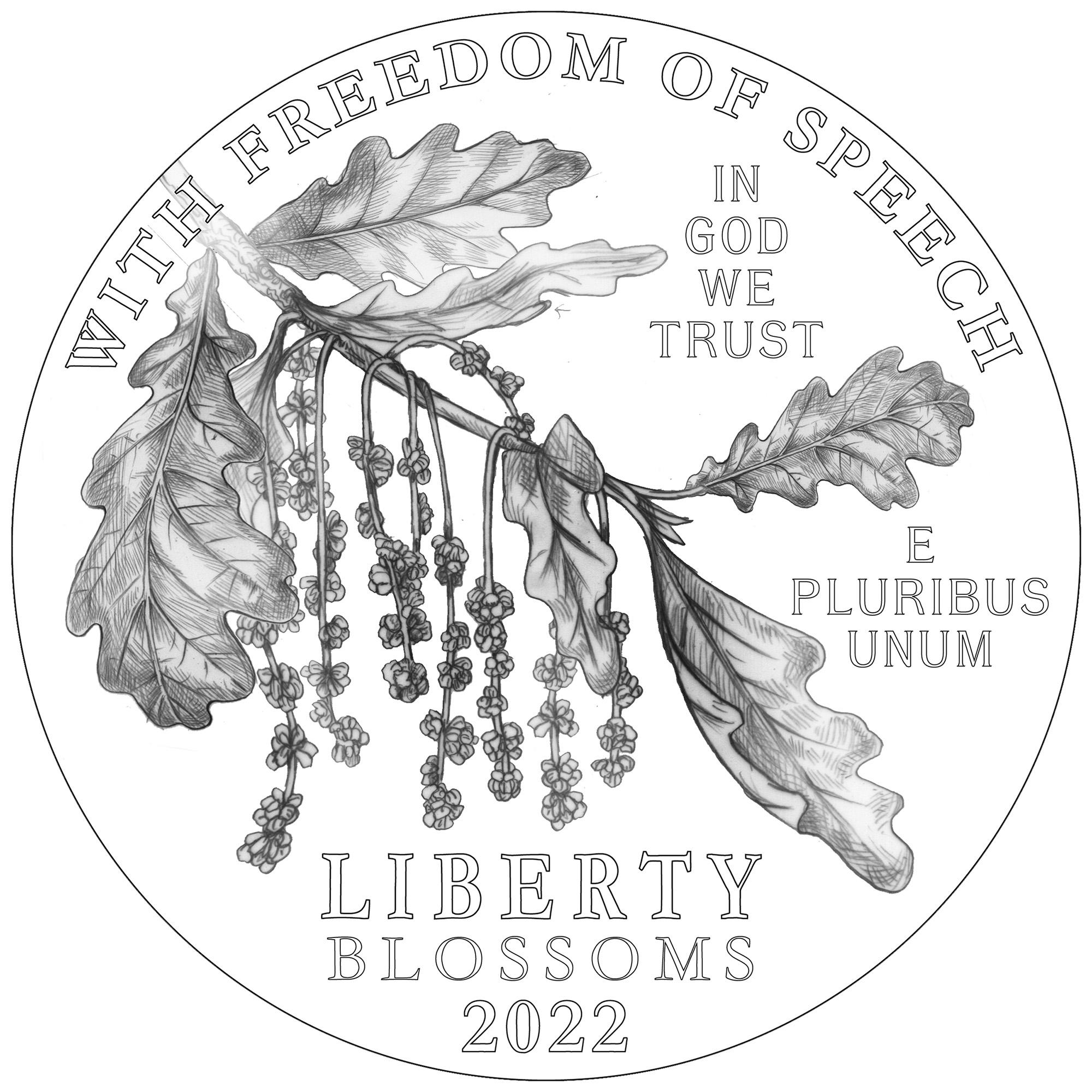 2022 American Eagle Platinum Proof Coin Line Art Obverse