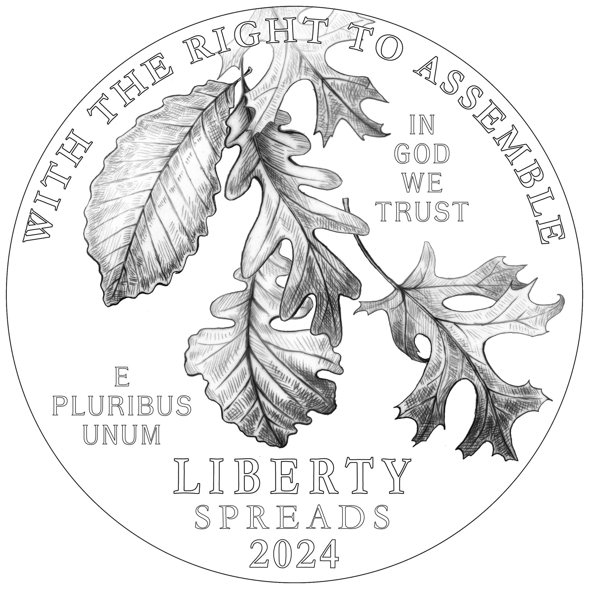 2024 American Eagle Platinum Proof Coin Line Art Obverse